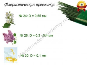 provoloka3
